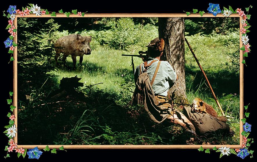 WILD BOAR, 2005 - 120x190 cm