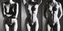 FEMALE TORSO Classic Black and White Nude Photography©sarosdy